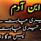 Aey Ibn Adam! Aik Teri Chahat Hai, Or Aik Meri Chahat Hai
