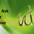 Allah, I Ask You For Your Love | Love Allah