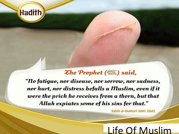 Nothing Befalls A Believer, A Throm Or More Than That, But Allah Will Raise Him One Degree In Status