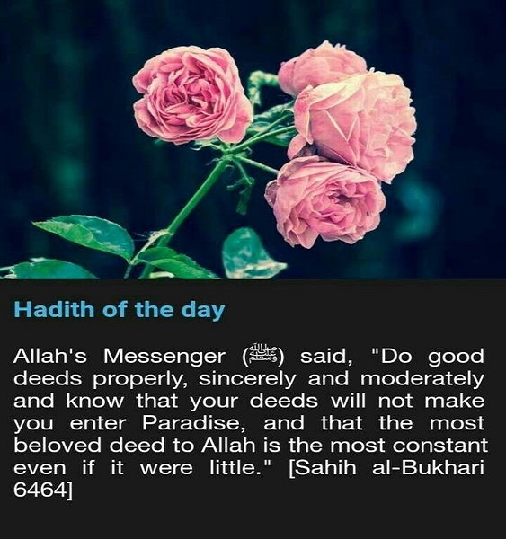 To Make The Heart Tender   The Regularity Of Deeds