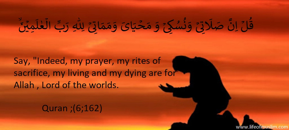 Everything Is For Allah | Lord Of The Worlds