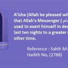 Prophet (P.B.U.H) Used To Exert Himself In Devotion During The Last Ten Nights