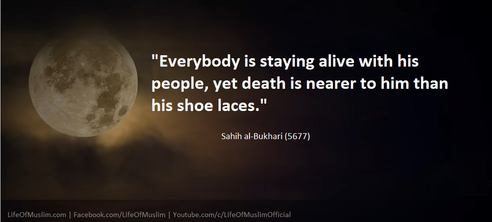 Everybody Is Staying Alive Yet Death Is Nearer