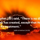 There Is No Disease Except Its Treatment