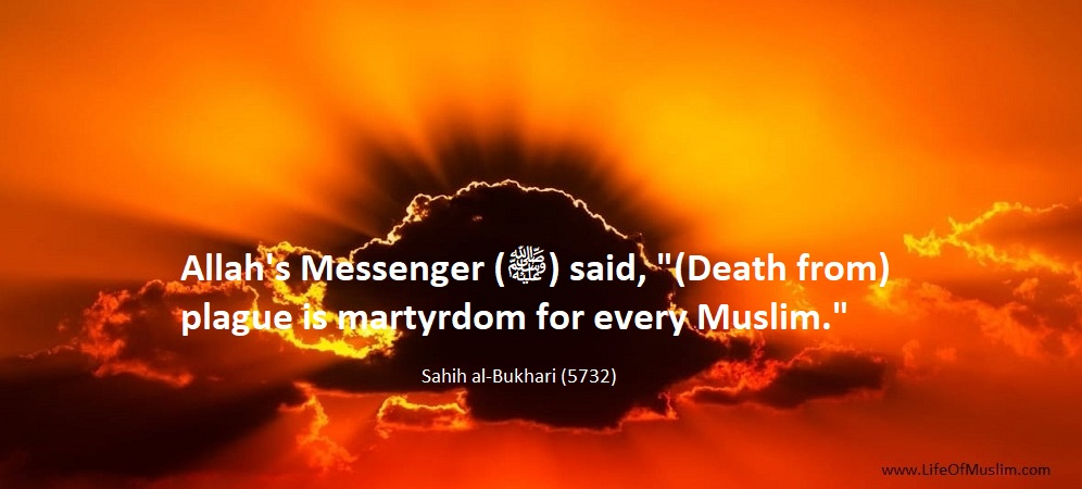 Death From Plague Is Martyrdom For Every Muslim