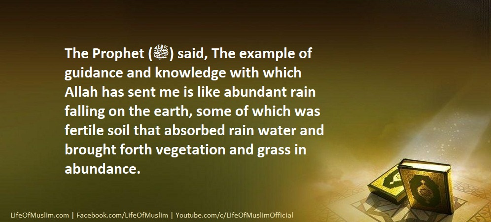 The Example Of Guidance And knowledge With Which Allah Has Sent Me Is Like Abundant Rain