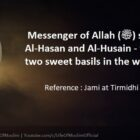 Imam Hasan And Imam Hussain (RA) They Are My Two Sweet Basils In The World
