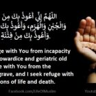 To Seek Refuge With Allah From The Fitnah Of Life And Death