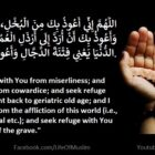 Seek Refuge From Miserliness, Cowardice, And Affliction Of This World | Dua