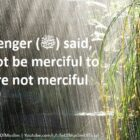 Allah Will Not Be Merciful To Those Who Are Not Merciful To Mankind